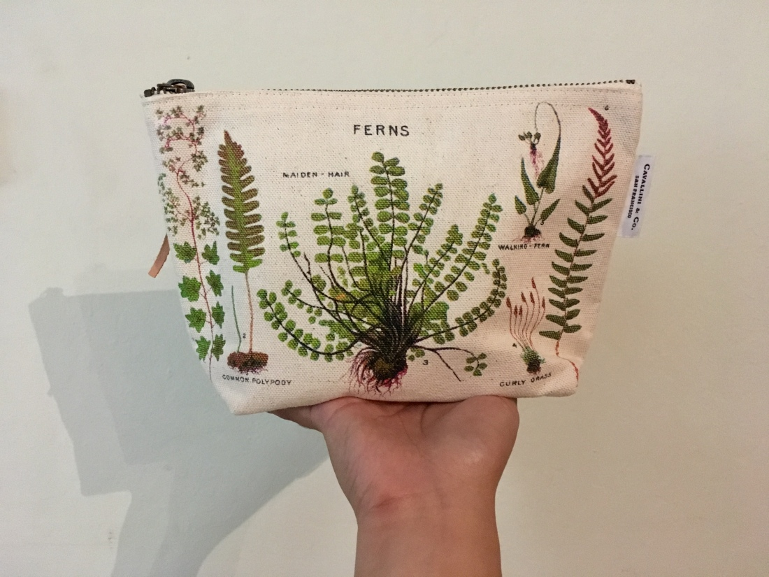 ferns botanical illustration pouch.jpg